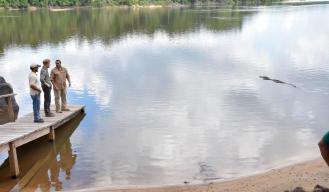 Prince Harry visits the Caiman pond at Iwokrama, where he saw the famous caiman 'Sankar'.