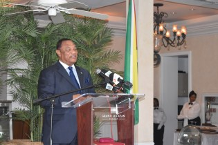 Prime Minister of the Bahamas, the Right Honorable Perry Christie delivering remarks during one of the visits
