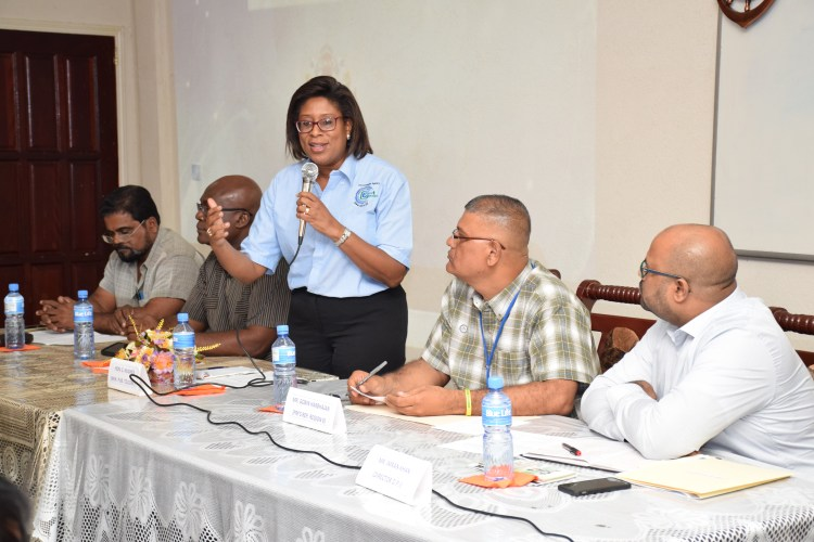 Minister of Telecommunications Catherine Hughes speaking to residents of Region Six