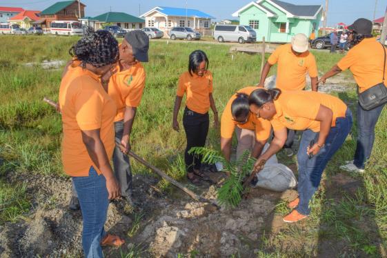 CH&PA staff planting a tree