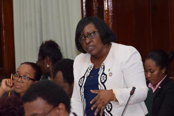Minister within the Ministry of Public Health, Dr. Karen Cummings during considerations of the budget estimates for Programmes Six and Seven of the Public Health Ministry