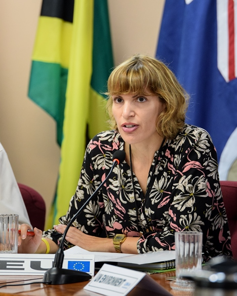 Charge′ d΄Affaires of EU in Guyana Ms. Layla El Khadraoui.