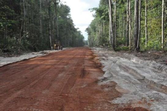 Amaila Falls access road.