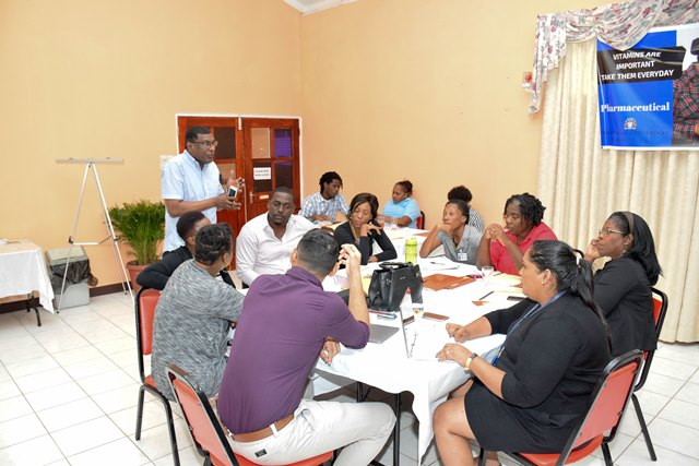 Regional and other primary level healthcare officers in discussion at the Regional Health Officers meeting