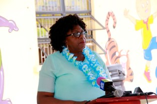 RDC Region Four Chairwoman, Ms. Genevieve Allen delivering remarks at the commissioning.