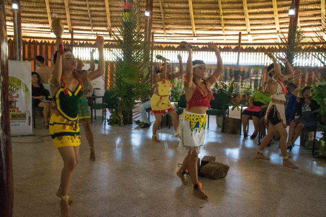 Indigenous cultural dance performed during the launched of Indigenous Heritage Month 2018