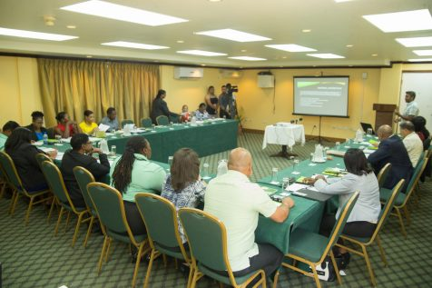 Stakeholders meeting to discuss advancing the phasing out of mercury use in mining