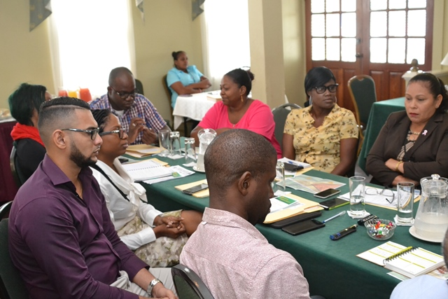 Those that are currently engaged in the two-day capacity building workshop.