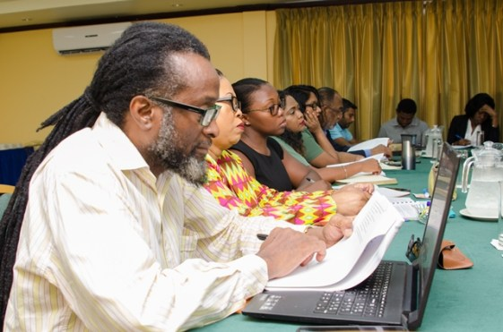 Participants at the National Mineral Sector Policy Framework workshop.