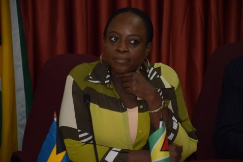 Director of the Department of the Americas at the Ministry of Foreign Affairs, Ambassador Charlene Phoenix.