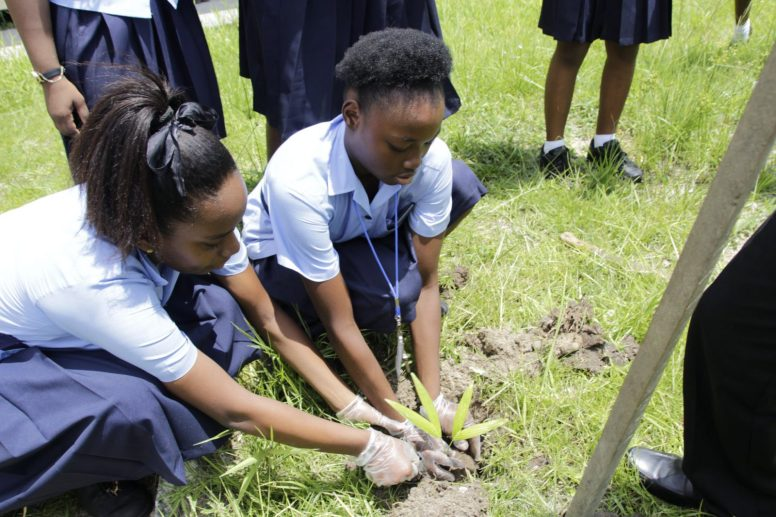 Students of East Ruimveldt Secondary School participating in the tree planting activity