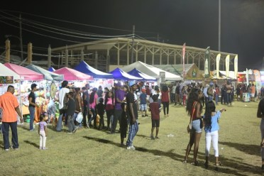 Patrons at the Berbice Expo 2018.