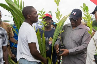 The ministers handing over plant seedlings to farmers.