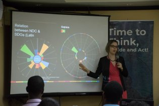 UN Regional Development Coordination Officer Piedad Martin presenting a power point presentation during the workshop.