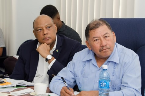 Ministers Raphael Trotman and Sydney Allicock listen attentively during a meeting of the National Working Group on the Minamata Convention on Mercury.