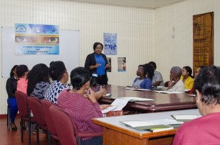 Coordinator of the Counter-Trafficking Unit, Tanisha Williams-Corbin addressing shelter operators during the training session.