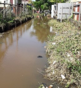 NDC crossing drainage ( South of old Mahaica Canal) showing encroachment of shoulders.