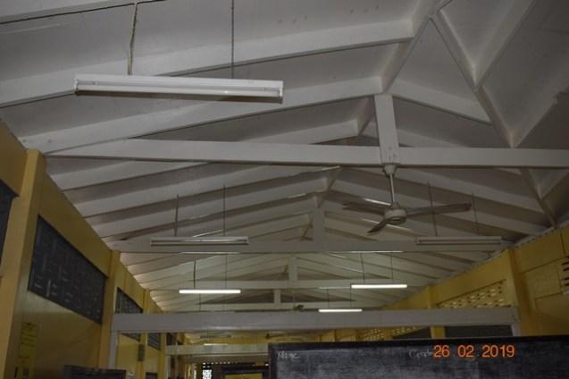 Bat proofed ceiling.