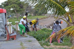 Massive clean-up on the Kingston seawall