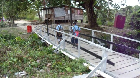 Two of the bridges constructed by the logger, Ameer Bacchus in the village of Hururu