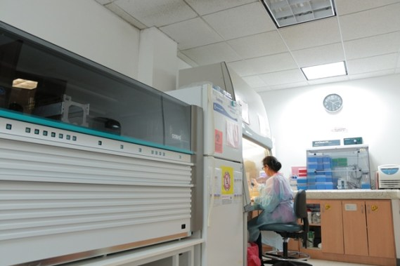 Operations at the National Public Health Reference Labortory, Thomas St. Georgetown.