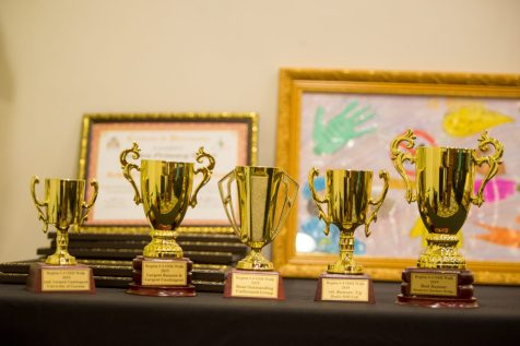 Some of the awards given to the recognised organisations.