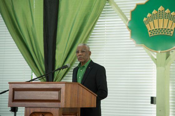 His Excellency, President David Granger