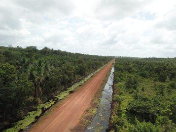 Wauna Phase 1 Project