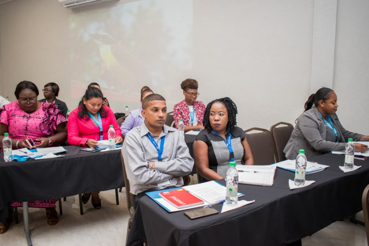 Stakeholders at the National Consultation to agree on Crime and Violence Prevention and Migration Training