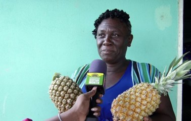 Baracara famer Utele Amsterdam proudly displays some of the pineapples from her farm while speaking with the Department of Public Information (DPI).