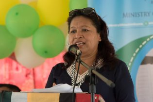 Minister of State, Hon. Dawn Hastings-Williams
