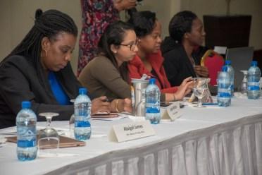 Representative of local agencies at the Final Trade Facilitation Agreement Workshop.