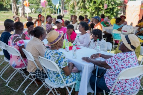 Some of the senior citizens at the tea party and concert event.
