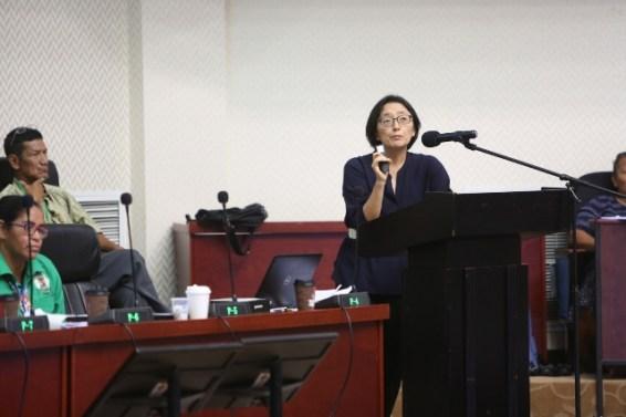United Nations (UN) Resident Coordinator and United Nations Development Programme (UNDP) Resident Representative, Mikiko Tanaka.