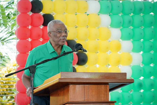 His Excellency David Granger.