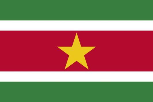 Suriname flag