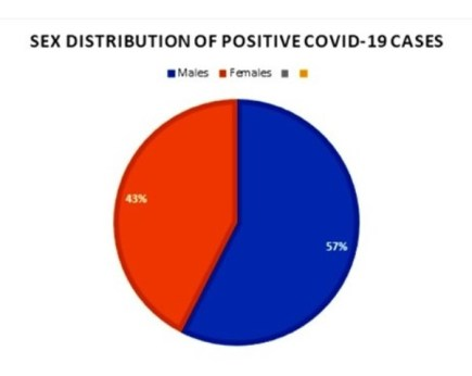 Chart shows the breakdown of male to female in positive cases