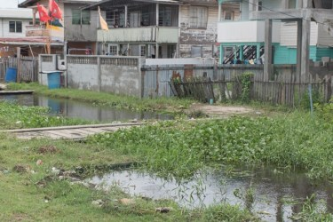 Some clogged drains in the Triumph/Mon Repos area to receive immediate remedial works