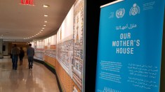 Announcing the launch of OUR MOTHER'S HOUSE at the United Nations in New York City