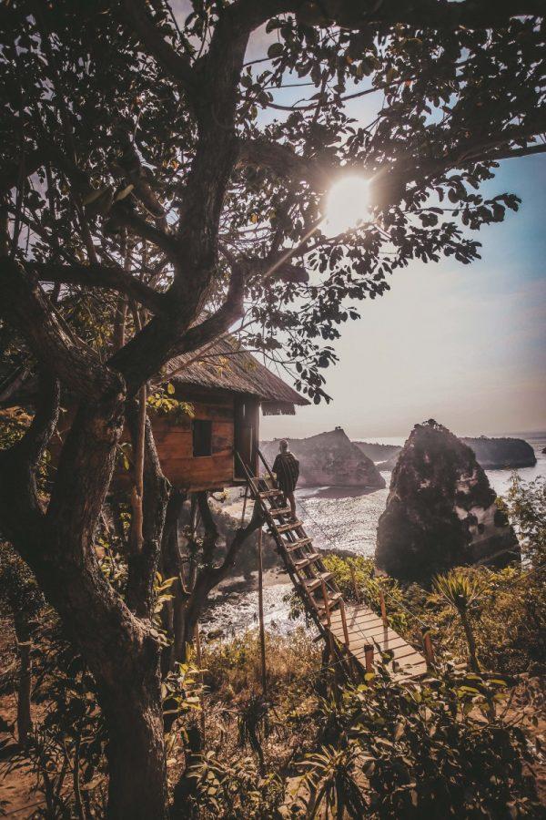 tree house nusa penida island