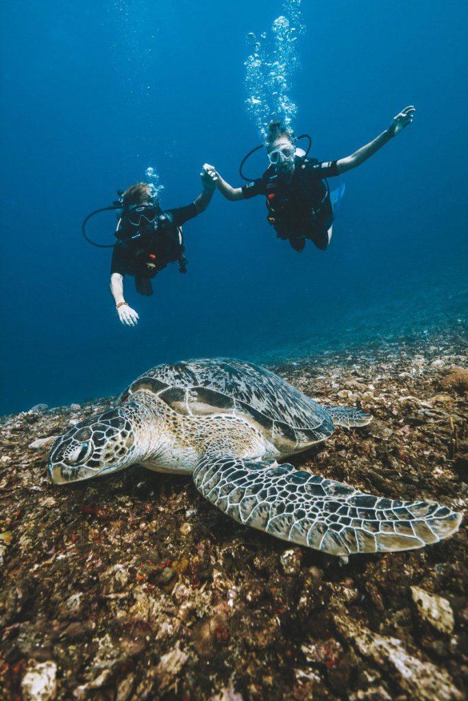 try scuba diving gili trawangan