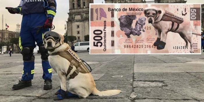Piden en redes poner a Frida en billetes de $500 pesos