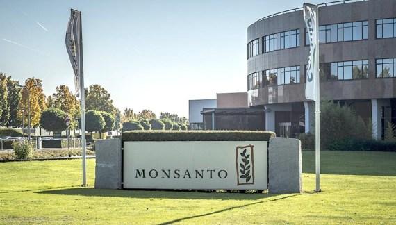 """Monsanto pierde """"batalla contra el cáncer""""; debe pagar 81 MDD"""