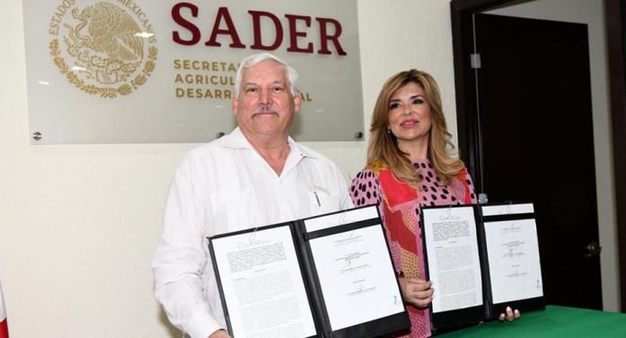 Secretaría de Agricultura instalará oficinas en CUM de Ciudad Obregón