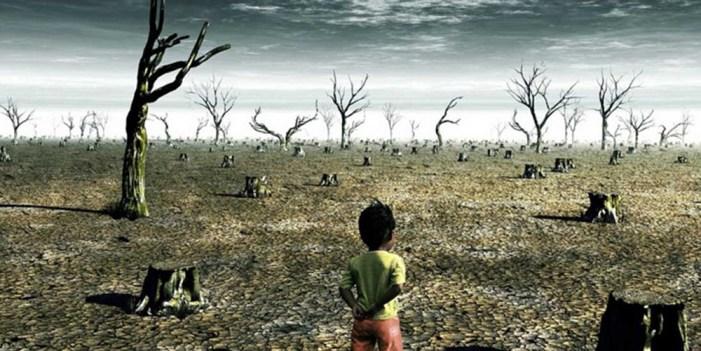 Cambio climático ya no puede esperar: Especialistas en educación