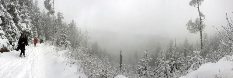 dpsg-sinsheim-rohrbach-2014-winterwanderung-009