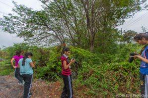 17-07-2015-Photo Walk-2