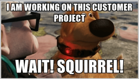Squirrel! Are Distractions Preventing your Business Success?