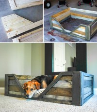 Making Sleeping Arrangements: Creative Ideas for DIY Dog ...