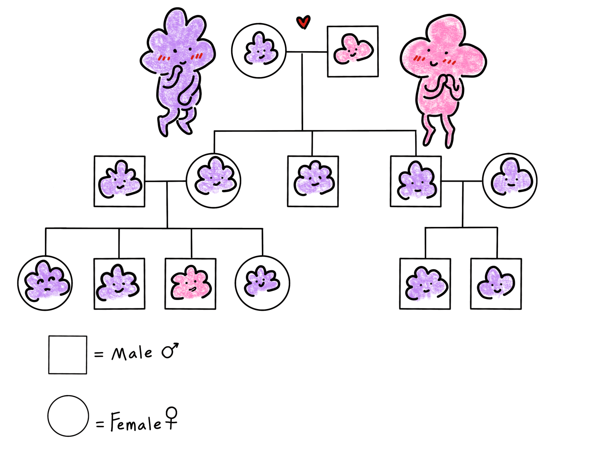 hight resolution of this is an illustration of a pedigree chart for a family of cartoon lumpy people